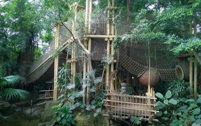 Erfahrungsbericht Center Parcs Het Heijderbos (38)