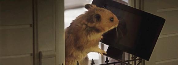 Hamster Hank randaliert