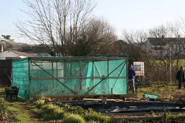 large_net_box_allotment