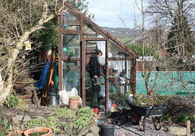 adam_in_greenhouse