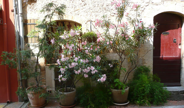 street-gardening