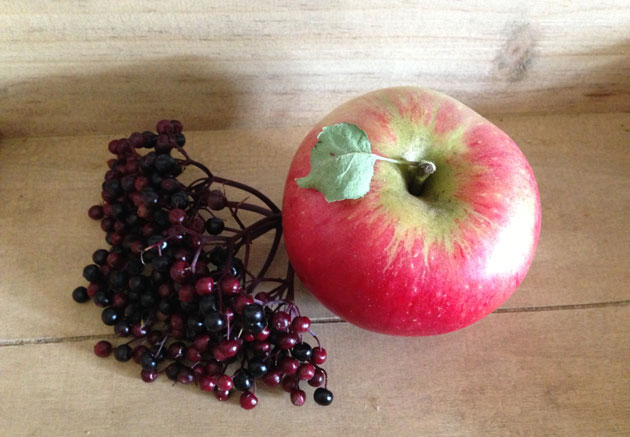 apple-elderberry