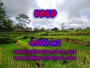 Tanah di Ubud Bali dijual view sawah dan sungai murah di Dekat sentral Ubud