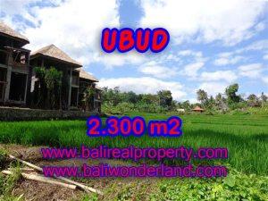 Tanah dijual di Ubud 2.300 m2 di Dekat Ubud Center