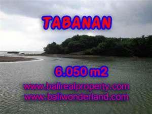 Jual Tanah murah di TABANAN TJTB098 - Kesempatan investasi property di Bali
