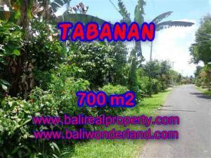 TANAH DIJUAL DI TABANAN BALI TJTB090
