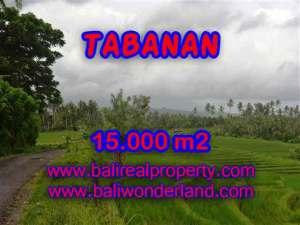 JUAL TANAH DI TABANAN BALI MURAH RP 470.000 / M2 - TJTB094