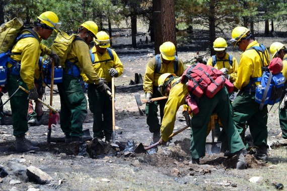 "The Navajo Scouts #5, a Type 2 wildland firefighting crew that is under the U.S. Interior Navajo Region Bureau of Indian Affairs Forestry Department, was putting out ""hot spots"" in the fire zone that were created by smoldering and often burning tree roots that created a dangerous situation if an individual walked over such a hot spot and his or her foot sunk into the hole of smoldering tree roots. The Navajo Scouts, under Crew Boss Terry Tso, were doing ""mop up"" of the fire on it northeast flank on June 21, 2014. Photo by Marley Shebala. (Please provide proper photo credit when reusing photo.)"