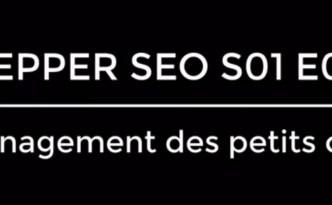 PepperSEO S01E01 «Le management des Petits clients»