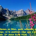Rindiéndote a la Soberanía de Dios
