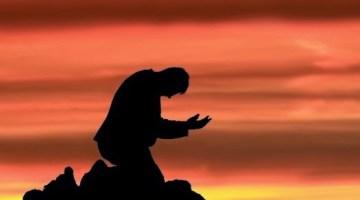 perdon de Dios 1