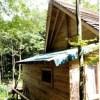 小屋でも快適な暮らし!? ガイナを使ったヒノキの小屋「小屋フェス」で展示される