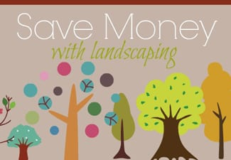 save money with landscaping