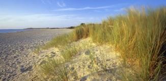beach, picnic, britain, travel, studland bay