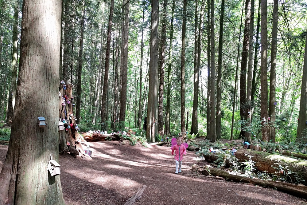 redwoodpark10