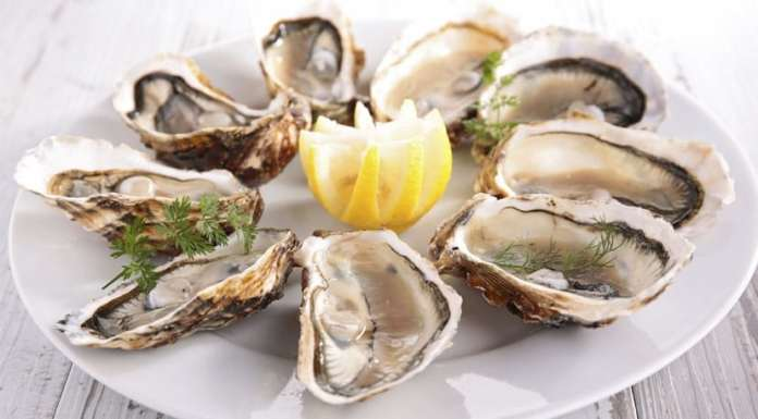 Health Benefits of Oysters