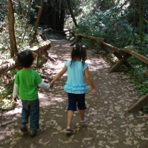 8 Fun Things To Do With Kids In Sonoma County