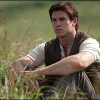 Riflessione su Gale: perché lo si ama o lo si odia