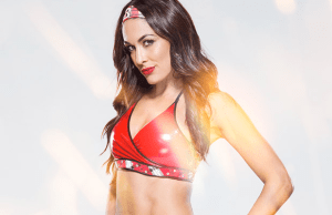 briebella2