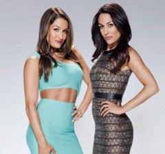 bella-twins-total-bellas-promo
