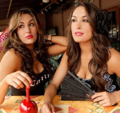 nikki-brie-bella-confessions-of-a-womanizer