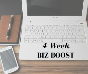 4 Week Biz Boost Course