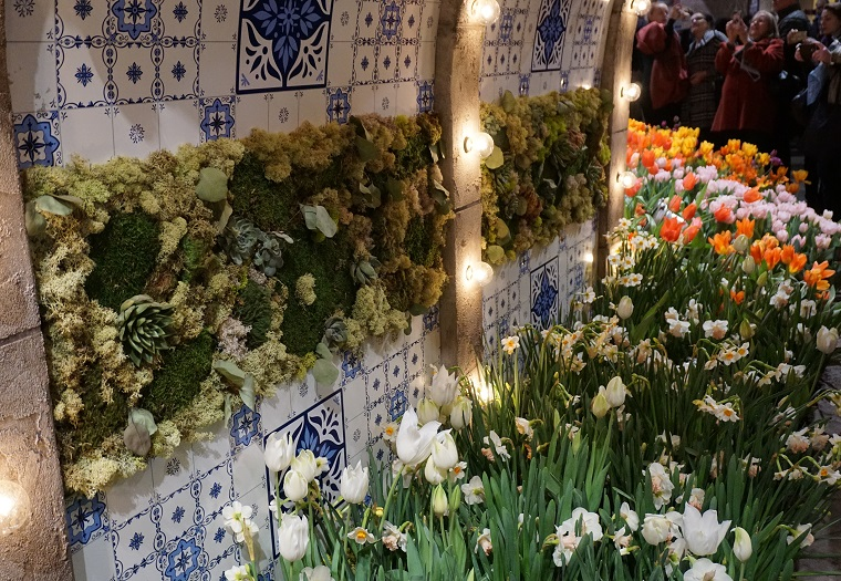 Succulent Wall with Dutch Tile work at Flower Show