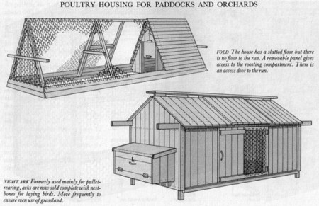 keeping chickens - poultry housing for paddocks and orchards