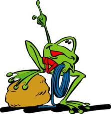kletterfrosch
