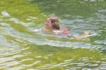 und bei jeder Gelegenheit in den Badesee springen