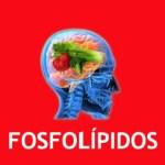 NUTRICION Y SALUD MENTAL: FOSFOLÍPIDOS