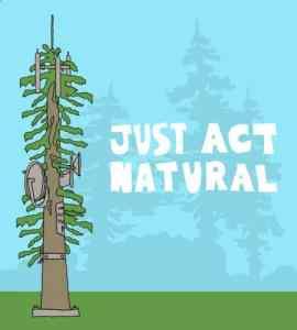 natural-cartoon