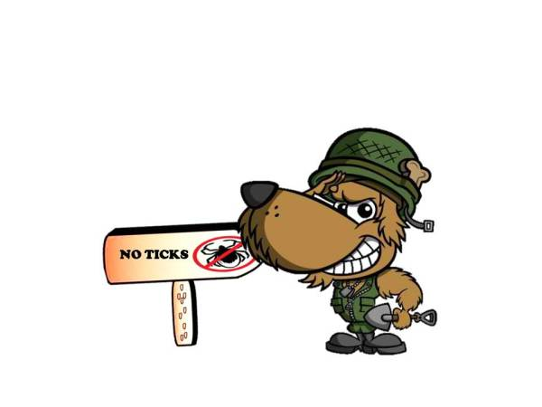 How to Win the War Against Ticks
