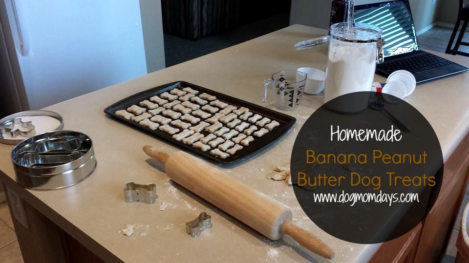 Recipe: Banana Peanut Butter Dog Treats
