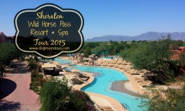 Sheraton Wild Horse Pass Resort & Spa Tour for the 2016 #BlogPaws Conference