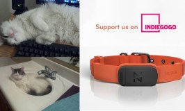 Keep Your Pets Safe at Home With the #NuzzleSmartCollar