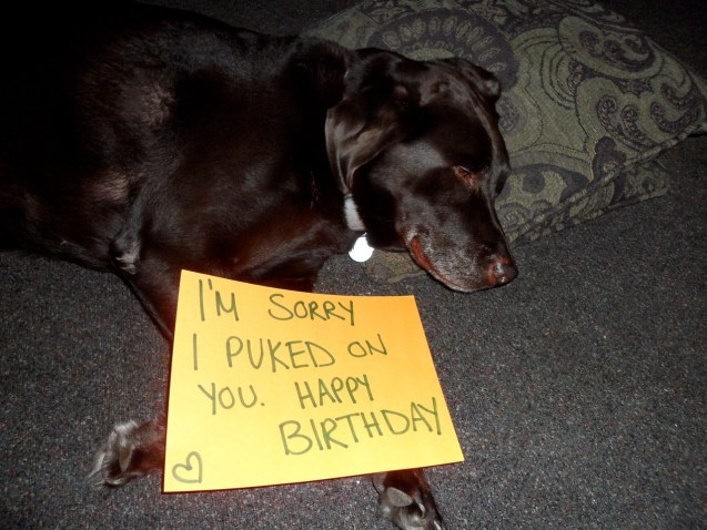Im Sorry I Puked On You Happy Birthday