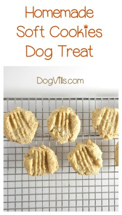 Old Baby Food Treat A Dog Bite Treat A Dog Reviews Soft Doggie Cookies Allergies Easy Homemade Hypoallergenic Dog Treat Recipe Er Dogs
