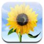 Apple_Photo_App_Icon