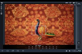 Canon 6D wireless wi-fi wifi control ipad tablet iphone shootin