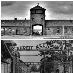 Auschwitz1