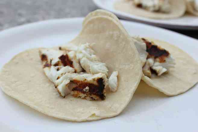 Grilled-halibut-fish-tacos