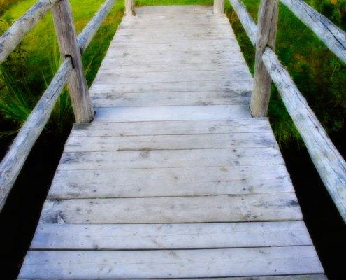 photograph of bridge to garden