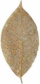 "Glitter -- Rubber Tree -- 3"" - Gold"