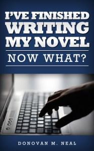 I've finished my novel now what