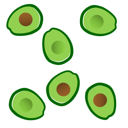 avocado end