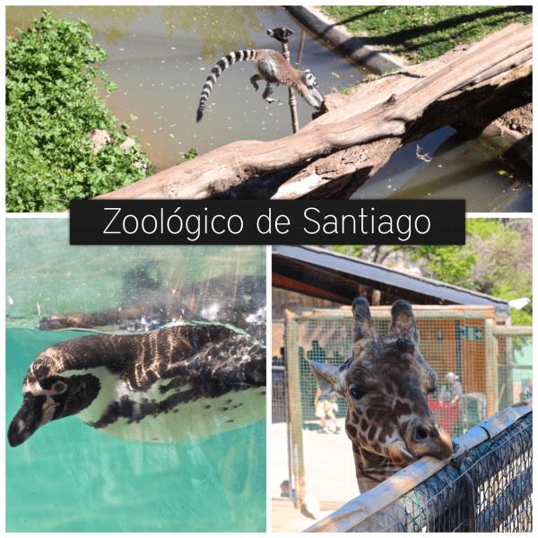zoologico santiago
