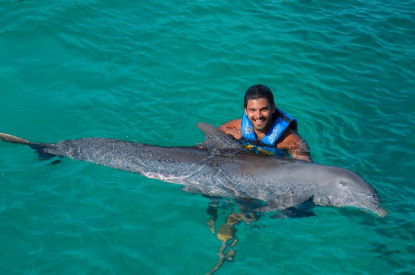 nadar com golfinho_-15