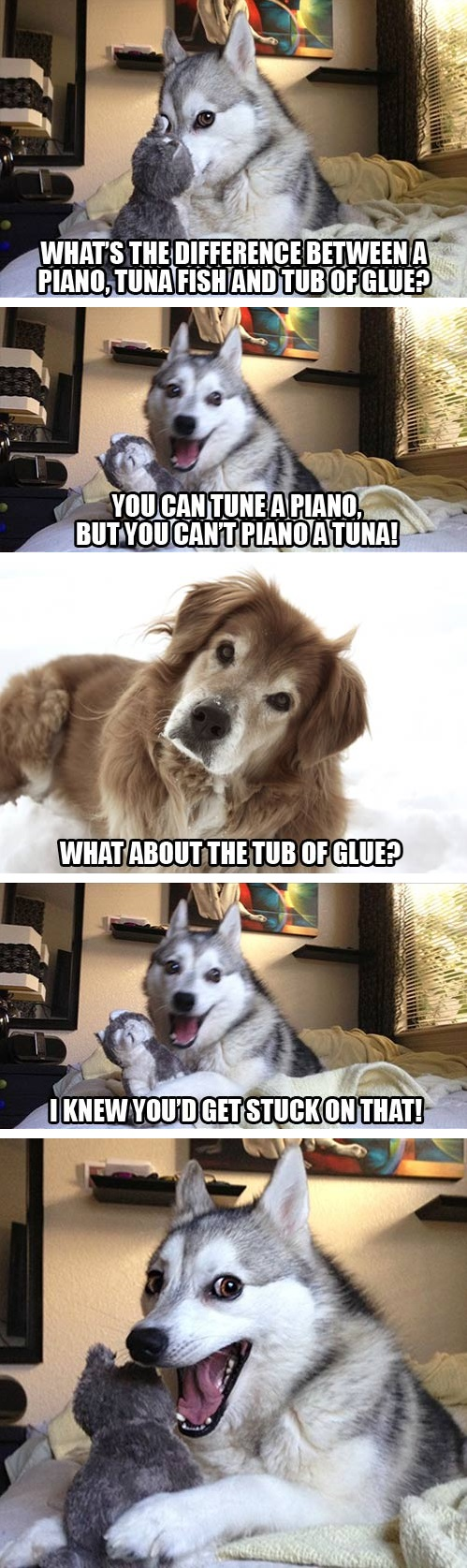 Fullsize Of Joke Dog Meme