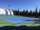 Sport Organizations Talent Improvement Camps